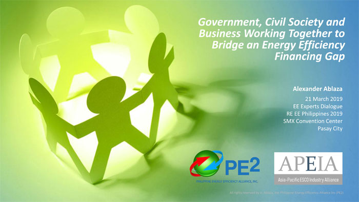 Government, Civil Society and Business Working Together to Bridge an Energy Efficiency Financing Gap