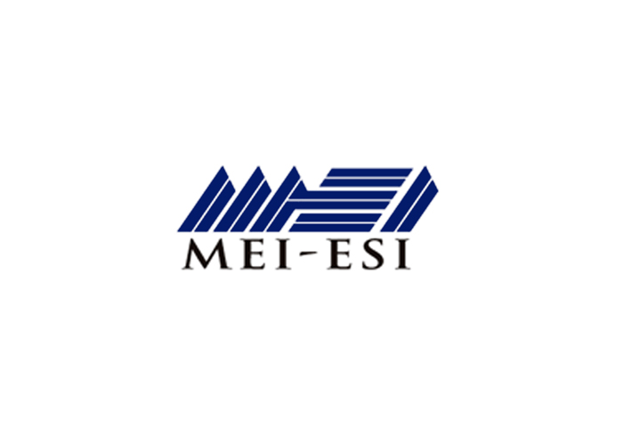 MEI Energy Solutions Inc (MEI ESI)