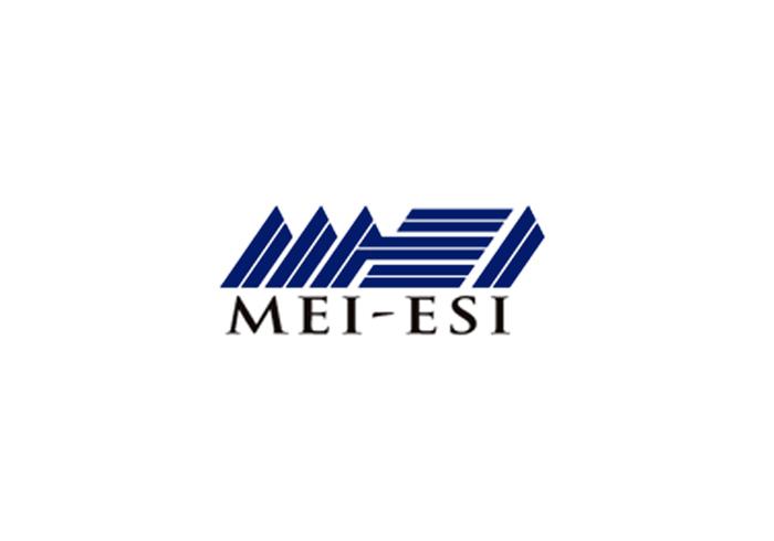MEI Energy Solutions Inc (MEI ESI)